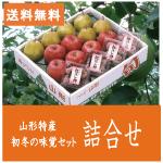 山形産ラフランス&富士りんご&紅ほし柿
