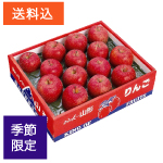 山形産富士りんご 特大玉5kg(12〜16玉)