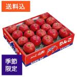 山形産富士りんご 大玉5kg(18玉)